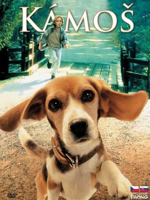 DVD Kámoš
