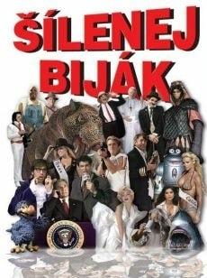 DVD Šílenej biják