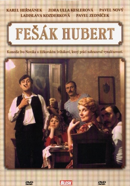 DVD Fešák Hubert