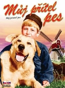 DVD Můj přítel pes