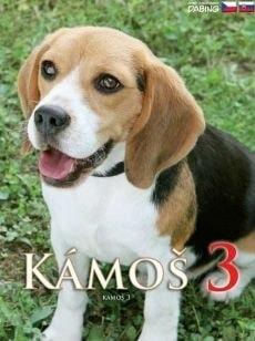 DVD Kámoš 3