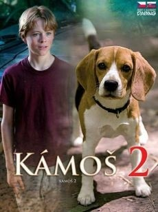 DVD K�mo� 2
