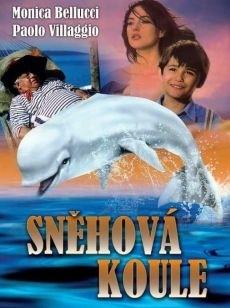 DVD Sn�hov� koule