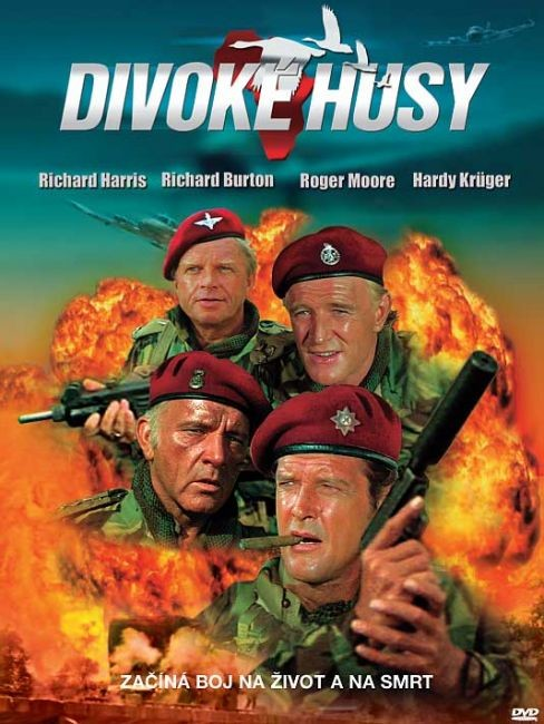 DVD Divok� husy
